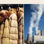 """Άρθρο του site voria.gr με τίτλο """"Η Καστοριά και η Κοζάνη βουλιάζουν λόγω γούνας και ΔΕΗ"""""""