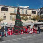 kozan.gr: Άρωμα Χριστουγέννων στην κεντρική πλατεία Κοζάνης – Τοποθετήθηκε το Χριστουγεννιάτικο δέντρο και ετοιμάζεται και η φάτνη (Φωτογραφίες)