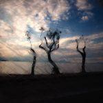 Το Φωτογραφικό Εργαστήρι του Δ. Κοζάνης μας συστήνει τον φωτογράφο Μανώλη Καραταράκη