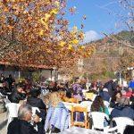 kozan.gr: Η 3η Παραδοσιακή Γουρνοχαρά, πραγματοποιήθηκε το μεσημέρι της Κυριακής 11 Νοεμβρίου, στα Νάματα Βοΐου  (Βίντεο & Φωτογραφίες)