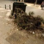 Πτολεμαΐδα: Eπιστολή διαμαρτυρίας αναγνώστη στο kozan.gr: «Αφού κλαδέψουμε, μαζεύουμε και τα κλαδιά και φύλλα και χόρτα»