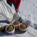 Σε ρίψη τροφής προκειμένου να καλυφθούν οι ανάγκες της θηραματοπανίδας της ζώνης ευθύνης του, εν όψη χιονοκάλυψης, προχώρησε ο Κυνηγετικός Σύλλογος Κοζάνης (Φωτογραφίες)