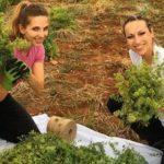 Οι δύο νεαρές αδερφές, δασολόγοι-περιβαλλοντολόγοι από το ΑΠΘ, που τόλμησαν στα χρόνια της κρίσης, μετά από παρότρυνση του θείου τους από το Τσοτύλι του δήμου Βοΐου