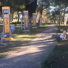 kozan.gr: Κοζάνη: Υπαίθρια όργανα γυμναστικής, τοποθετήθηκαν στην περιοχή του Ξενία (Φωτογραφία)