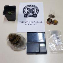 Σύλληψη 35χρονου στην Πτολεμαΐδα για καλλιέργεια, διακίνηση και κατοχή ναρκωτικών ουσιών (Φωτογραφία)