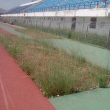 """Σχόλιο αναγνώστη στο kozan.gr: """"Η """"ζούγκλα"""" του αθλητικού κέντρου Πτολεμαΐδας (Φωτογραφίες)"""