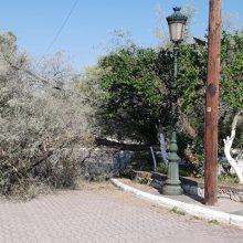 Πρωινή πτώση δένδρου στην έξοδο της Τ.Κ. Νεράιδας (Φωτογραφία)