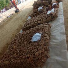 Κοζάνη: Σπάνια ευρήματα σε αρχαιολογική σκαπάνη (Φωτογραφίες)