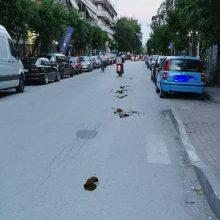 """Σχόλιο αναγνώστη στο kozan.gr: """"H νέα μόδα που έχει κατακλύσει την πόλη της Πτολεμαΐδας"""" (Φωτογραφία)"""