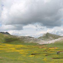 Ο ΕΟΣ Κοζάνης διοργανώνει ανάβαση στο Λάκμο ή Περιστέρι και στη μοναδική Βερλίγκα την Κυριακή 30.6.2019