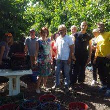 Στις περιοχές του Νομού Κοζάνης με έντονη αγροτική παραγωγή βρέθηκε η υποψήφια Βουλευτής Κοζάνης της ΝΔ Παρασκευή Βρυζίδου