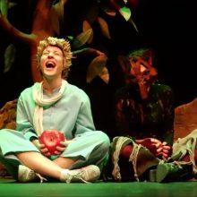 Η θεατρική παράσταση ο «Μικρός Πρίγκιπας»,  την Πέμπτη 11 Ιουλίου, στο πάρκο εκτάκτων αναγκών στην Πτολεμαΐδα