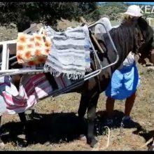 kozan.gr: Ου Θουμάς κ' η Αντρουνίκη κίντζαν του Δικαπινταύγουστου για τα μπάνια – Το χιουμοριστικό βίντεο από το Μεταξά Σερβίων