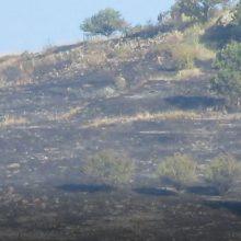 kozan.gr: Πρωινές εικόνες από το σημείο που εκδηλώθηκε η πυρκαγιά σε χορτολιβαδική έκταση 2,5 χλμ. περίπου από το Βαρικό Φλώρινας – Μικρές εστίες αυτή την ώρα σε εξέλιξη