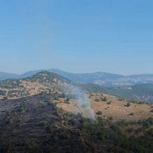 kozan.gr: Ώρα 09:15π.μ.: Εικόνες του kozan.gr, από ΨΗΛΑ, από το σημείο της  χορτολιβαδικής έκτασης που έκαψε η φωτιά, περίπου 2,5 χλμ. από το Βαρικό Φλώρινας (Βίντεο)