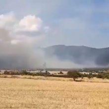 kozan.gr: Βίντεο από τη πυρκαγιά σε αγροτοδασική έκταση κοντά στην περιοχή Λεύκαρα Σερβίων