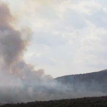 kozan.gr: Ώρα 16:36: Νέες εικόνες από τη φωτιά έξω από τα Λεύκαρα Σερβίων – Δείτε το ύψος που φτάνει ο καπνός από τις καμένες εκτάσεις και την επιχείρηση πυρόσβεσης δύο καναντέρ (Βίντεο)