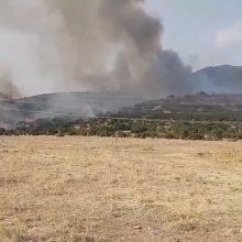 kozan.gr: Ώρα 17.40: Νέα κοντινά πλάνα από τον κύριο μέτωπο της φωτιάς κοντά στην περιοχή Λεύκαρα Σερβίων