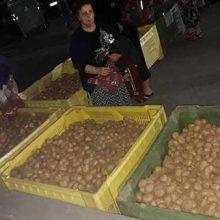 Εκδήλωση με άριστες εντυπώσεις και πλήθος  κόσμου συμμετοχής στη γιορτή πατάτας στο Καπνοχώρι Κοζάνης  (του Κοντού Ναπολέοντα)
