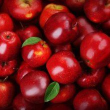 Εορδαία: Περιζήτητα τα «Κόκκινα μήλα» του Μηλοχωρίου