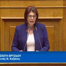 """Ομιλία της Παρασκευής Βρυζίδου Βουλευτή Π.Ε. Κοζάνης στην Ολομέλεια της Βουλής των Ελλήνων για το Νομοσχέδιο: """"Επενδύω στην Ελλάδα και άλλες διατάξεις"""" στις 23/10 (Bίντεο)"""