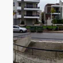 Σχόλιο γονέα στο kozan.gr: Κοζάνη: Αδέσποτα παντού: Σήμερα, ακριβώς έξω από 2ο και 5ο Γυμνάσιο. Ώρα προσέλευσης μαθητών (Bίντεο)