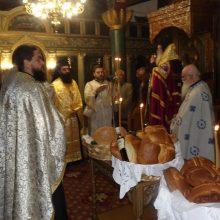 Η εορτή των Παμμεγίστων Ταξιαρχών στην Κερασιά Κοζάνη (Φωτογραφίες)