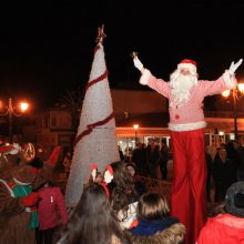 kozan.gr: Στις 6 Δεκεμβρίου, συναυλία με τοπικό συγκρότημα και βραδιά γευσιγνωσίας στον Κρόκο Κοζάνης, στο πλαίσιο των Χριστουγεννιάτικων εκδηλώσεων, ετοιμάζει η Αντιδημαρχία Τοπικής Ανάπτυξης και Επιχειρηματικότητας