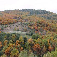 Φθινοπωρινά χρώματα στα Καμβούνια (Φωτογραφίες)