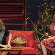 kozan.gr: Κοζάνη: Πραγματοποιήθηκε το βράδυ του Σαββάτου 23 Νοεμβρίου,  η πρεμιέρα της θεατρικής παράστασης, «Τριαντάφυλλο στο στήθος» του Τενεσί Ουίλιαμς (Βίντεο & Φωτογραφίες)