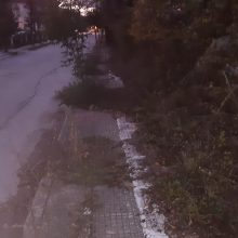 Kozan.gr: Κοζάνη: Απροσπέλαστα πεζοδρόμια, λόγω αγριόχορτων, σε κάθετο δρόμο, επί της οδού Ιωνίας, πλησίον  της σιδερένιας γέφυρας, προς Κρόκο (Φωτογραφίες)