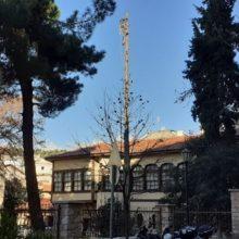 kozan.gr: Η σημερινή δύσκολη κοπή της κορυφής πολύ ψηλού δέντρου στο Επισκοπείο της Κοζάνης(Bίντεο)
