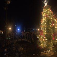 kozan.gr: Φωταγωγήθηκε το Χριστουγεννιάτικο δέντρο στο Βαθύλακκο Σερβίων, το βράδυ της Κυριακής 8/12 (Φωτογραφίες)