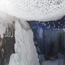 Πτολεμαΐδα: Περισσότεροι από 8000 μαθητές στο Παλαιοντολογικό Μουσείο