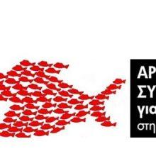 Αριστερή Συμπόρευση για την ανατροπή στη Δυτική Μακεδονία: «Οχι Φ/Β στο Κωσταράζι της Π.Ε Καστοριάς»