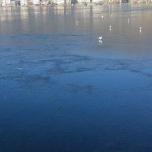 Σημερινές φωτογραφίες και βίντεο συνεργάτη του kozan.gr από την παγωμένη λίμνη της Καστοριάς