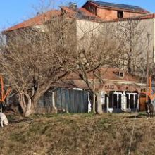 """Επιστολή αναγνώστη στο kozan.gr: """"Μια εικόνα αρκεί για να περιγράψει την κατάσταση με τα αδέσποτα στο Δ.Δ Δρεπάνου"""""""