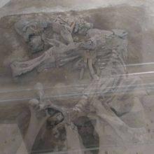 kozan.gr: Κανένα πρόβλημα με το σκελετό του ελέφαντα Περδίκκα Πτολεμαΐδας – Η επίσημη απάντηση, για το θέμα, στην Ανθρωπολογική Εταιρεία Ελλάδος, από το ΚΟΙΠΠΑΠ του Δήμου Εορδαίας – Φωτογραφίες (πρόσφατες) από το εύρημα που αποδεικνύουν ότι βρίσκεται στη θέση του και δεν έχει μετακινηθεί