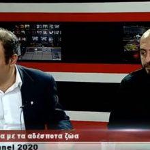 """kozan.gr: Η πολύ ενδιαφέρουσα συζήτηση για το πρόβλημα με τα αδέσποτα ζώα σε Κοζάνη & Πτολεμαίδα από την χθεσινή εκπομπή """"Fοrum Επικαιρότητας"""" του West Channel (Βίντεο)"""