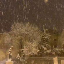 Αρχισε η κακοκαιρία: Πυκνή χιονόπτωση στην Φλώρινα (Βίντεο)