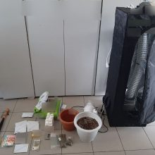 Σύλληψη πέντε ατόμων για παραβάσεις της νομοθεσίας περί ναρκωτικών και περί όπλων στη Φλώρινα