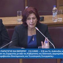"""Ομιλία της Παρασκευής Βρυζίδου Βουλευτή Ν. Κοζάνης της ΝΔ στη Διαρκή Επιτροπή Παραγωγής & Εμπορίου: """"Για την περιοχή μας, το νομό Κοζάνης, απ΄ όπου κατάγομαι, τη Δυτική Μακεδονία και γενικά τη βόρεια Ελλάδα, θεωρώ ότι υπάρχουν πολλές δυνατότητες συνεργασίας – Το Μαυροβούνιο είναι μια χώρα που πρέπει να προσεγγίσουμε""""  (Bίντεο)"""