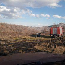 kozan.gr: Πυρκαγιά σε χορτολιβαδική έκταση σημειώθηκε το μεσημέρι της Τετάρτης 26/2 στην Τ.Κ. Ομαλής Βοΐου – Άμεση η επέμβαση των πυροσβεστικών υπηρεσιών (Φωτογραφίες)