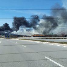 kozan.gr: Φωτιά, σε εξέλιξη, σε περιοχή έξω από τα Κοίλα Koζάνης  (Φωτογραφίες & Βίντεο)