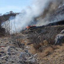 kozan.gr:  Φωτιά σε λάστιχα σε παράνομο σκουπιδότοπο στην περιοχή Μελισσίων Κοζάνης η εστία απ' όπου ξεκίνησε η πυρκαγιά – Έχει τεθεί υπό έλεγχο. (Βίντεο)
