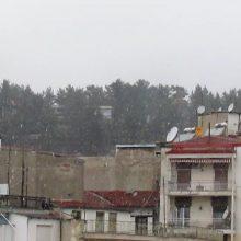 kozan.gr: Ώρα 08:35 π.μ.: Χιονόπτωση, αυτή την ώρα, στην πόλη της Κοζάνης (Βίντεο)