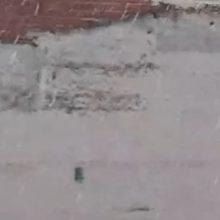 kozan.gr: Χιονόπτωση, αυτή την ώρα (07:50 π.μ.), στην Πτολεμαίδα (Βίντεο)