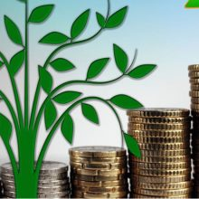 kozan.gr: Εγκρίθηκε από το Πράσινο Ταμείο, προϋπολογισμού 245.520 €, Προμήθεια δυο συστημάτων βυθιζόμενων κάδων διαβαθμισμένης συμπίεσης και δυο βυθιζόμενων συστημάτων αποθήκευσης απορριμμάτων με κάδους συμβατούς με τα κοινά απορριμματοφόρα των ΟΤΑ για την αναβάθμιση Κοινόχρηστων Χώρων στο Δήμο Εορδαίας