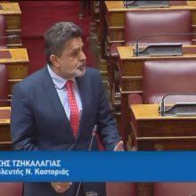 """Ζήσης Τζηκαλάγιας στη Βουλή : """"Η πανέμορφη Καστοριά δεν είναι Σπιναλόγκα ,είναι ασφαλέστατη και σας περιμένει"""""""