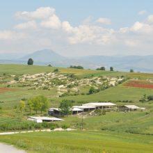 Εφορεία Αρχαιοτήτων Κοζάνης:  Επαναλειτουργία Αρχαιολογικών Χώρων, από αύριο, Δευτέρα 18 Μαΐου